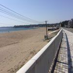 春の三浦海岸