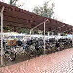 共用の自転車置き場。管理人さんがいるので管理体制も安心