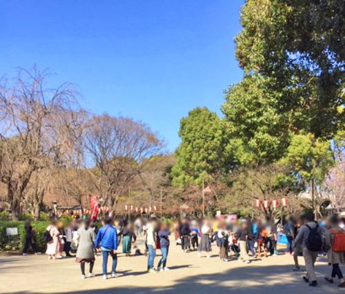 春の上野公園